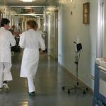 Riforma di Medicina, al lavoro si va prima
