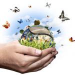 Energie per la ricerca: bando di concorso per 20 premi di ricerca scadenza il 21 dicembre