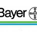Bayer offerte di lavoro e stage