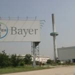 Bayer, tante offerte di lavoro a Milano