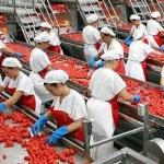 Alimentare, diverse offerte in Italia